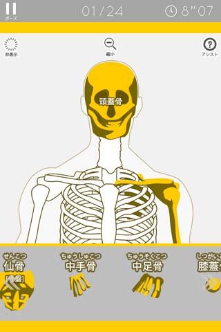 あそんでまなべる 人体模型パズルの画像 4